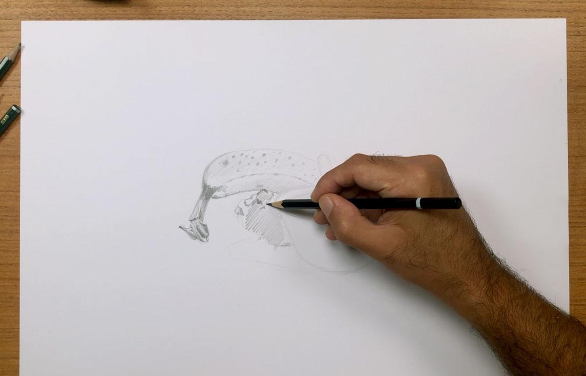 cours de dessin en ligne la méthode des 24 heures